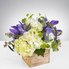 flower delivery cincinnati flower delivery in cincinnati greene s flower shoppe