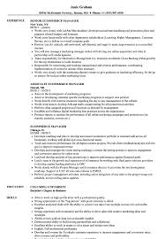 resume templates account executive position salary in nfl what is a franchise ecommerce manager resume sles velvet jobs