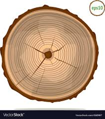 tree rings images Tree rings royalty free vector image vectorstock jpg