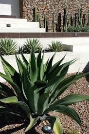 southwest style home decor 100 southwestern style home decor wall ideas southwestern