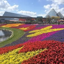disney epcot flower u0026 garden festival 2017 colorful blooms