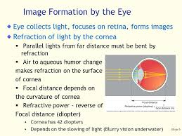 Legal Blindness Diopter Slide 1 Vision Is Remarkable Extremely Complicated And Costly