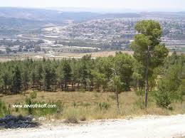 parashat naso zorah and eshtaol and the territory of dan vbm