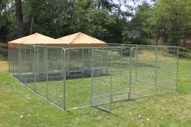 dog kennel play zone