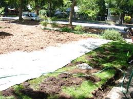 Landscaping Wood Chips by Sheet Mulch Your Lawn To Death Eve U0027s Garden Design Native