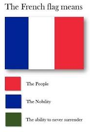 Meme French - france loves to surrender flag color representation parodies