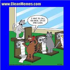 Hilarious Cartoon Memes - cat memes clean memes page 5
