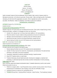Good Resume Introduction Examples by Good Resume Example