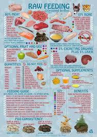 raw foods to feed your dog u2026 pinteres u2026