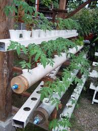 Clever Gadgets by Clever Gadgets And Gizmos For Passionate Gardeners
