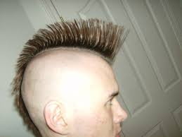 pictures of 1985 hairstyles mohawk hairstyle wikipedia
