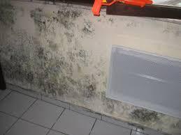 moisissure mur chambre quelles sont les origines possibles d un mur intérieur humide