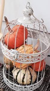 best 25 bird cage decoration ideas on pinterest birdcage decor