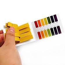 How To Make Litmus Paper At Home - 2 packs ph 1 14 test paper litmus strips tester 80pcs per pack