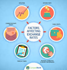 Exchange Rate 8 Key Factors That Affect Foreign Exchange Rates