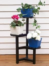 plant stand indoor garden stand low light houseplants plants