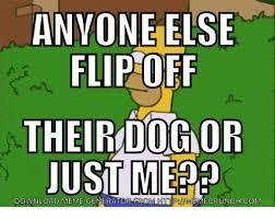 Image Flip Meme Generator - anyone else flip off theirdognor just m download meme generator