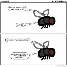 Fly Meme - on the fly meme by zaneymoon memedroid