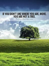 if you don t like where you are move you are not a tree