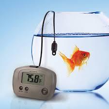 amazon com acurite 00888a3 indoor outdoor digital thermometer