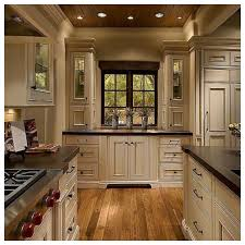 dark kitchen cabinets with light wood floors