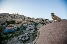 desert tent desert tower tent cing the desert tower ca 31 hipcer