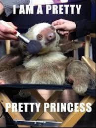 Sloth Meme Pictures - sloth memes weneedfun
