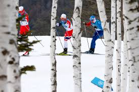 what are the olympic skiing events here u0027s the difference between