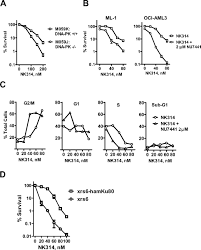 dna dependent protein kinase and ataxia telangiectasia mutated