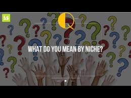 what do you by niche