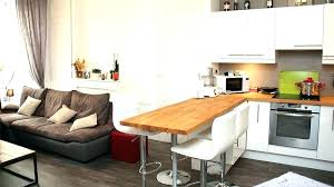 amenagement cuisine studio amenagement studio 20m2 amenagement cuisine 20m2 cethosia me idee
