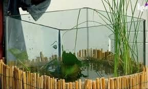come creare un giardino fai da te giardino acquatico in vaso come realizzare un mini pond leitv