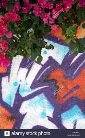 Abstract Wall Mural Abstract Wall Mural Section With Bougainvillea Stock Photo