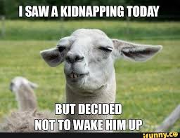 Memes Today - 35 most funny goat meme pictures and images