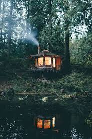 tiny cabin deep in the woods of the north cascades wa cozyplaces