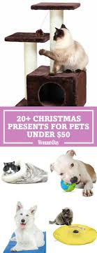 pet christmas 30 best dog and cat gifts best christmas pet gift ideas