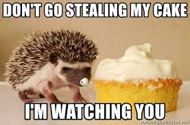 Hedgehog Meme - don t go stealing my cake i m watching you hedgehog meme generator