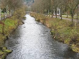 Polarion Bad Liebenzell Bad Liebenzell Stadt Auf Der Suche Nach Hotel Investor Bad