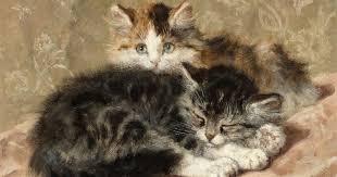 Chions League Meme - these cat portraits are 19th century memes vulture