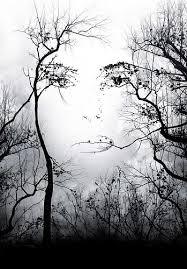 tree face tree face optical illusion