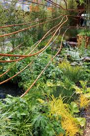 19 best contemporary gardens images on pinterest contemporary
