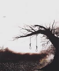 the hanging tree gif on imgur
