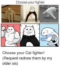 Fighter Meme - a choose your fighter choose your cat fighter request redraw them