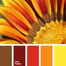 Yellow Color Combinations Best 20 Yellow Color Schemes Ideas On Pinterest U2014no Signup