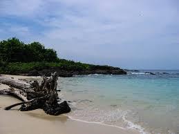 iguana island azuero peninsula road trip 4 days panama road trips