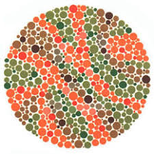 Color Blind What Do They See Ishihara U0027s Test For Colour Deficiency 38 Plates Edition Colblindor