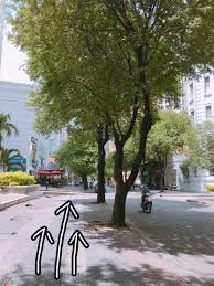 which side does st go on how to get to grow from ton duc thang st grow 美容室 グロー