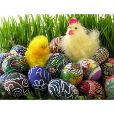 pagan easter facts our everyday