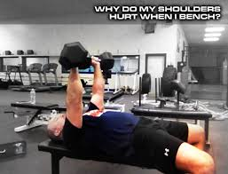 How To Do Dumbbell Bench Press Why Do My Shoulders Hurt When I Bench Diesel Sc
