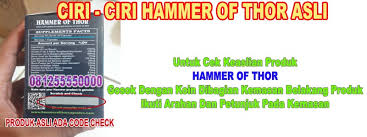 hammmer of thor asli italy obat pembesar penis permanen